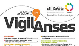 Newsletter Vigil'Anses
